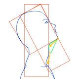 横顔の顎のライン