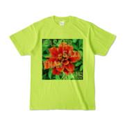 Tシャツ ライトグリーン Invective_HANA