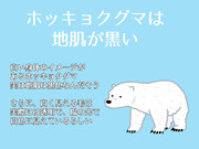 岡本数春とホッキョクグマの豆知識