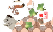 「落ち葉」※写真加工・POP・彩・おむ09122