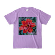 Tシャツ ライトパープル Invective_HANA