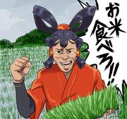 お米食べろ!!!!!