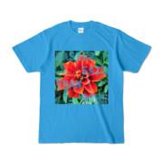 Tシャツ ターコイズ Invective_HANA