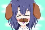 しまむらと一緒になれて喜ぶ安達犬
