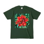 Tシャツ フォレスト Invective_HANA