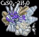 CaSO4・2H2O