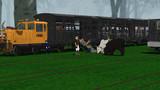 牛がいっぱいギュウっと積まれた貨車