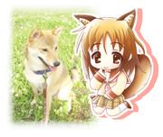 【わん娘】愛犬を擬人化