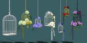 鳥かごと花2 配布