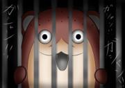 牢屋をガシャンガシャンするボクカワウソ