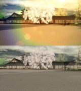 桜屋敷ステージ【配布】