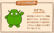 【ぽっちゃり昆虫図鑑】No.019「カナブン」