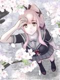 由良さんと桜
