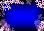 夜桜フレーム