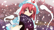 Perfect Cherry Blossom