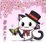 ポジティブ猫ヤミーくん  「春」