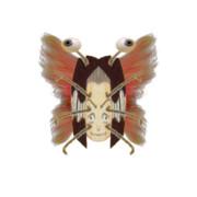 セミコウジ(翅)