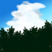 小澄佳輝の積乱雲