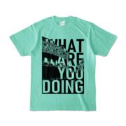 Tシャツ | アイスグリーン | 何してるColosseo
