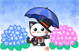 ポジティブ猫ヤミーくん 「雨と傘とアジサイ」