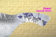 「おだまき」※写真加工・透過効果・彩・背景金色・おむ09321
