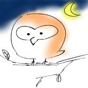 小澄佳輝のフクロウ