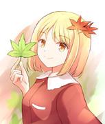 夏季の樹葉