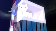 【MMD】新宿の猫