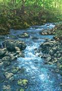 深緑の小野川渓流
