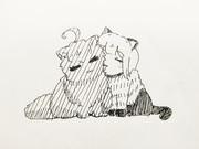猫デリカと猫ノ瀬志希