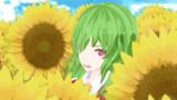 向日葵畑の妖怪