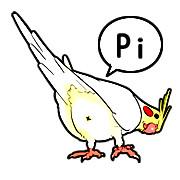 ボコボコインコの挨拶!Pi