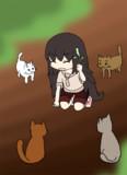 猫に包囲される