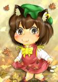 秋になったので紅葉を集めます