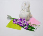 トトロ(小)のぬいぐるみ デンファレ 折り紙  着彩
