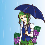 悲しみの雨