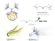 オワタ式構造式2+α