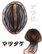 生アワビのお造り 季節のマツタケを添えて