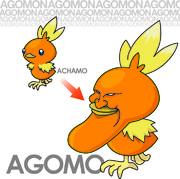 【アゴモン】アチャモ?