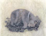 眠りクマ(アナログマ)