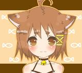 娘猫(こねこ)