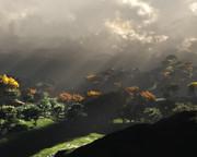 雨上がりの山岳地帯