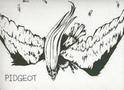 PIGEOT