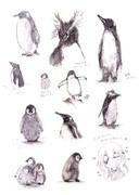 ペンギンさん練習