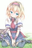 【東方】草原に咲くアリス