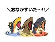 腹減り魚竜種