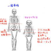 公式絵さとりの手の短さに対する解剖学的なアプローチ
