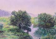 初夏の川淵