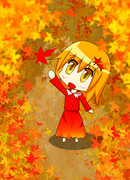 秋です!!