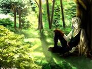 森のエルフ